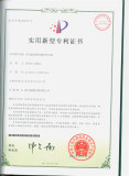 letters patent 1