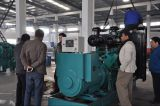 Middle-East dealer visit our factory
