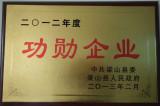 Meritorious Enterprise of China Tube Mill