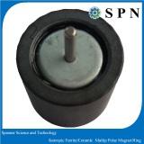 Ferrite magnet for stepping motor