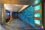 Novelty Fish Aquarium