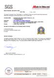SGS Audit Factory Report 1