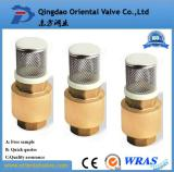 brass check valve with ss strainer