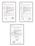 CE RoHS Certificate--LED flood light