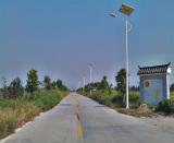 Guangdong shunde