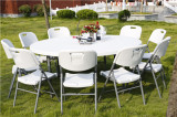 10 person used big round table