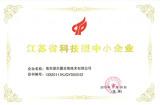 Jiangsu technology enterprises