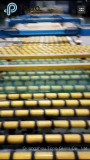 Production Line of Tinted Float Glass