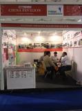 In India Fair,2015