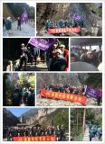 a Trip of Nuomeng for All Employees in 2014