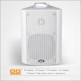 LBG-504 wall speaker 25w