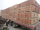 Plywood package for Algerian customer