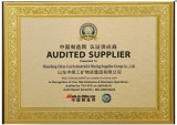 China Coal Group TUV SUD Audited Supplier