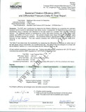 Nelson certificate
