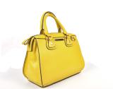 Newly Women′s Leather Tote Handbag