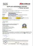 SGS report-P1
