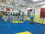 taekwondo mat show