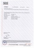 SGS Report for The Magnet Silver Coating a Page