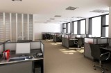 Company tour- office
