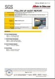 SGS report-P2