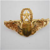 Eagle Shape Metal Police Badge