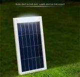 Solar Light(Lamp)