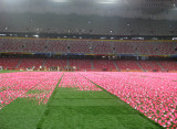 Artificial Grass for Beijing Paralympic Games