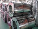 Galvanized Steel Coil Sheet