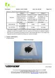 CI Flake 2 PAHs (page 3)