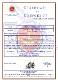 CE Certificate about Safety Goggles