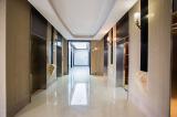 AOLIDA Elevator show room