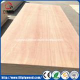 pencil cedar/ easter red cedar veneer laminated commercial plywood
