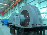 products(Synchronous motor)