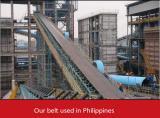 Wear-resistant conveyor belt