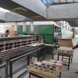 firing in kiln