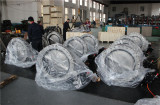 SS316L butterfly valve ready for packing