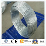 Hot Dipped Galvanized Wire / Wire Rod / Steel Wire