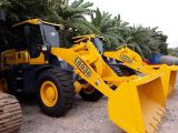 LOADERS IN THE GLOBAL MARKET