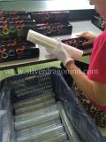 Workshop of Silver Dragon Industrial Limited′s PE cling film
