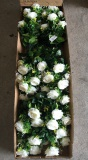 Packing of Rose Bouquet/Bush