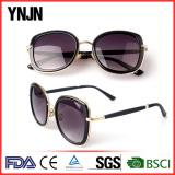 Fashion sunglasses(1296)