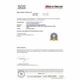 SGS Audit Report 20120612