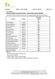 CI Flake 1 PAHs (page 2)