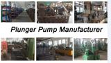 Plunger Pump Factory