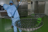 coating process