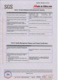 SGS Audit Report 7