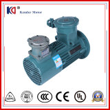 Frequency Conversion Explosion-Proof AC Electric Motor with Regulating Speed
