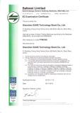 EC Certificate - 1