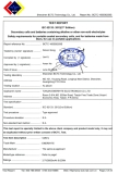 IEC TEST REPORT of Lithium Battery