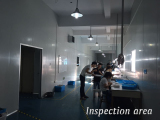 inspection area